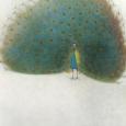 杉山寧「孔雀」