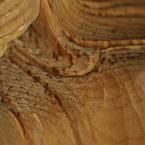 高村光雲 木彫部分のシミ