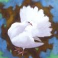 杉山寧『鳩』