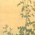 菱田春草「薊に鳩図」