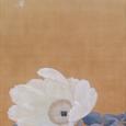 菱田春草「白牡丹」