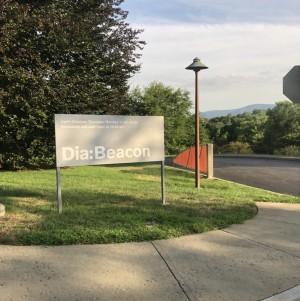 diabeacon_1